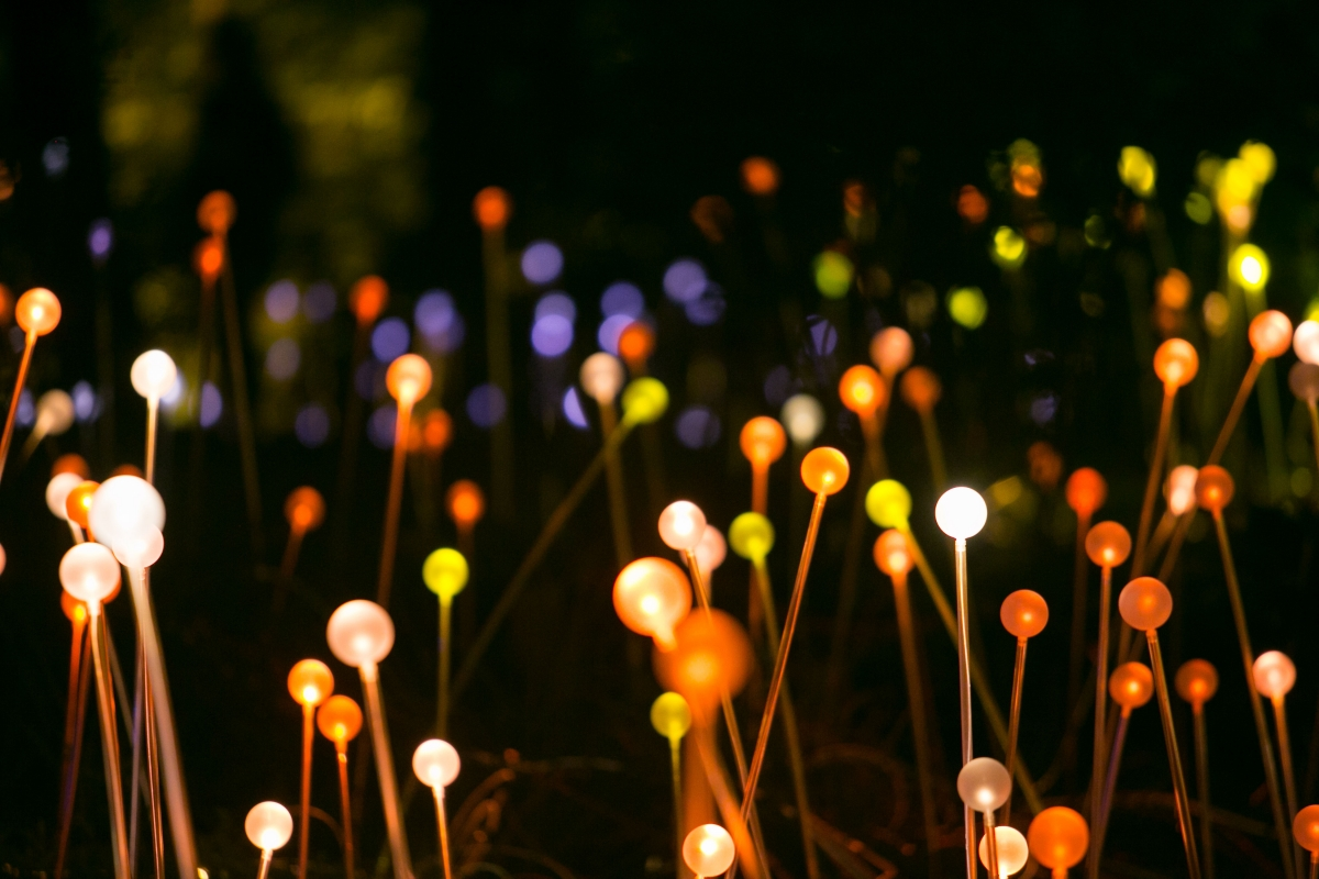 Bruce Munro: Light in the Garden | Architectural Lighting ...