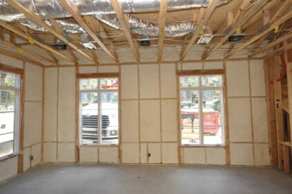 Insulated and ready for sheetrock.