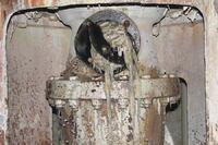 Wastewater utilities take aim at wet wipes
