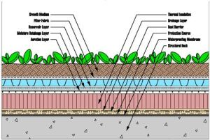 Green Roofs The Waterproofing Aspects Concrete