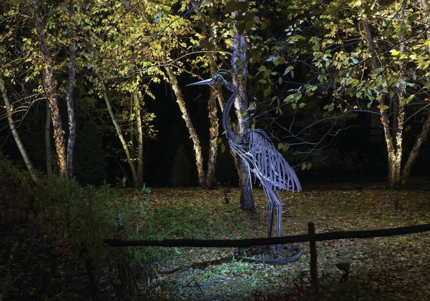 The Blue Heron metal sculpture in the birch grove was a particular challenge to light, and blue lenses and filters were used for this.