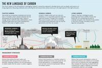 Is Carbon the Culprit?