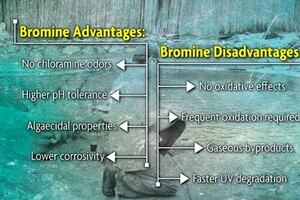 Sanitation with Brominating Products