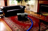 Long hoses carry ozone throughout the home in the CleanZone mold eradication process.