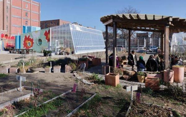 Garden class transpires in the outdoor classroom.