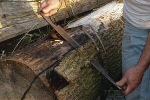 Debarking Red Cedar Logs