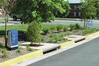 Urban stormwater bioretention