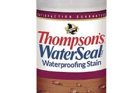 Thompson's Aerosol Waterproofing Stain