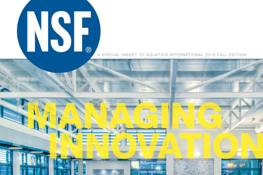 NSF 2016 Supplement: Managing Innovation
