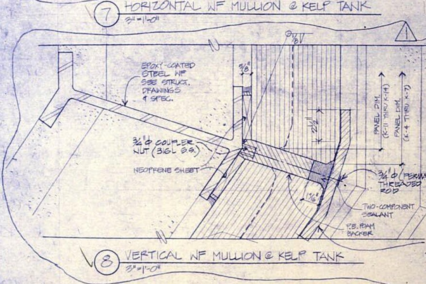 Plan section of a vertical steel mullion for the kelp tank glass walls
