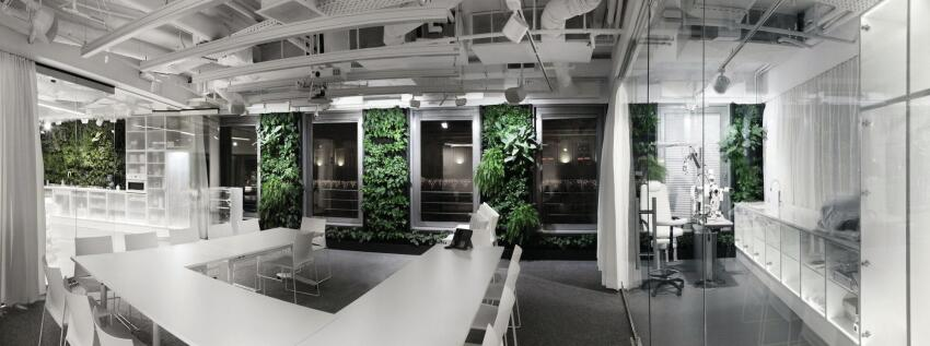 Conference room interior, with view to the open office.
