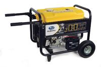 Robin America Inc./Subaru SGX3500 Commercial Generators