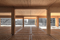 Can Timber Skyscrapers Really Help Save The Planet?