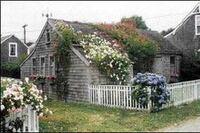 Design: Rose-Covered Cottages