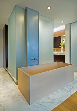 Frosted glass boxes, flanking a step-up passageway, enclose a shower and toilet compartment.