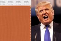 What Pantone Color Is Donald Trump?