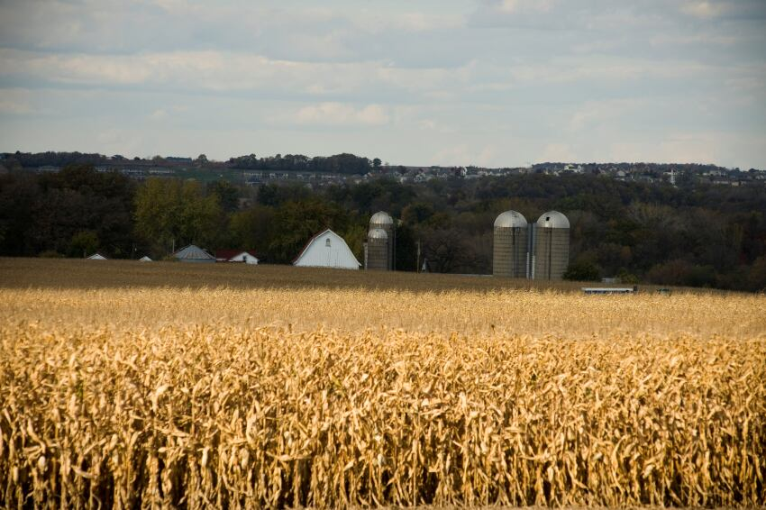 Agricultural Urbanism Takes Root in Wisconsin