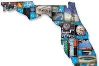 Florida Tackles Codes, Licensing