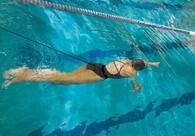 StrechCordz® Safety Cord Short Belt, great for backyard pool swims.