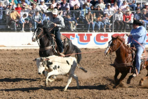 What the Rodeo's Team Roping Event Can Teach You About Remodeling