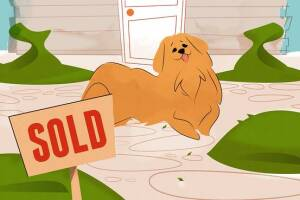 Pooches may be on the table in a real estate closing.