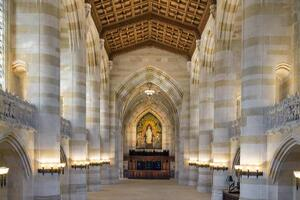 Illuminating a Cathedral of Learning