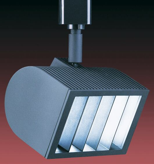 Line voltage wall washer from W.A.C. Lighting