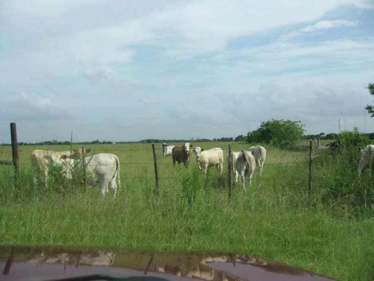 Houston Investor Amasses Thousands of Acres in Katy, Texas