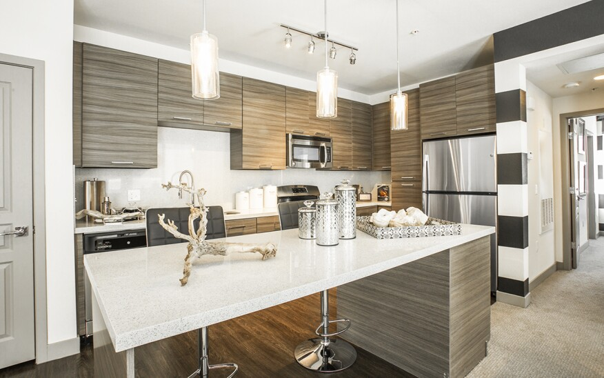 A high-end luxury kitchen at The Calida Group's Elysian at the District Property.