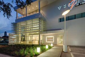Vitenas Cosmetic Surgery and Mirror Mirror Beauty Boutique