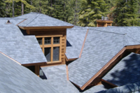 2015 Roofing Trends: 50 Shades of You-Know-What
