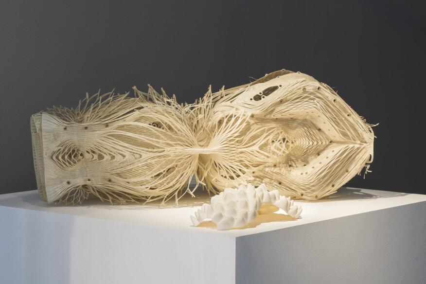 Installation model by Robert Stuart-Smith Studio