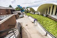 College Rooftop Goes Green