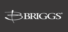 Briggs Plumbing Products Logo