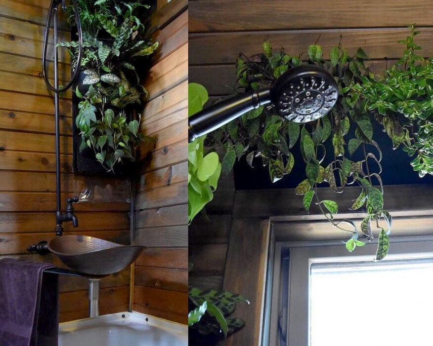 Shower-integrated living wall