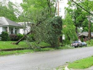 """Damage from the """"derecho"""" that swept the East Coast."""