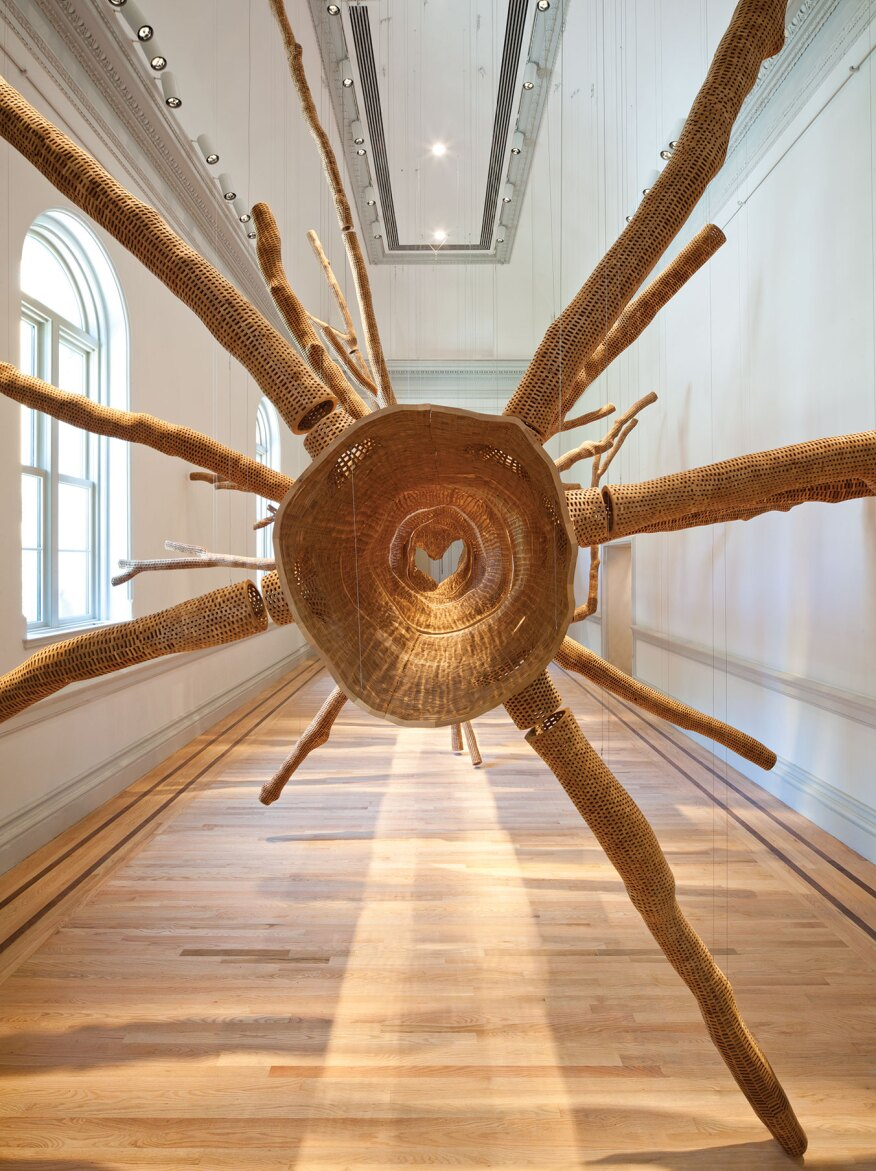 "John Grade's Middle Fork (Cascades) (2015), part of the Renwick Gallery's ""Wonder"" exhibit, was formed using the case of a 150-year-old hemlock tree to commemorate the gallery's reopening."