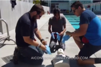 2016 AI Summer Lifeguard Challenge for June