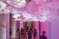 2013 AL Design Awards: Lantern Field, Washington, D.C.