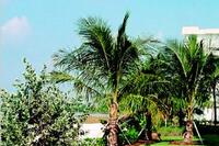 Native Landscaping Benefits Environment