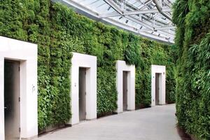 Longwood Gardens' Living Wall