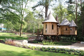 Treehouse Escape at Water's Edge