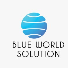 Blue World Solution - Digital Marketing Agency Logo