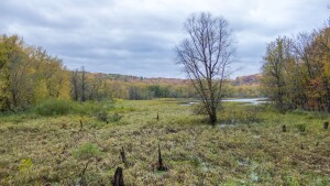 Under the watch of the National Park Service, $3 million worth of illegal construction projects went on for nearly a decade at Effigy Mounds National Monument in northeast Iowa.
