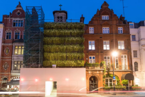 Strawberry-Covered Facades: An Eco-friendly Upgrade to Scaffolding