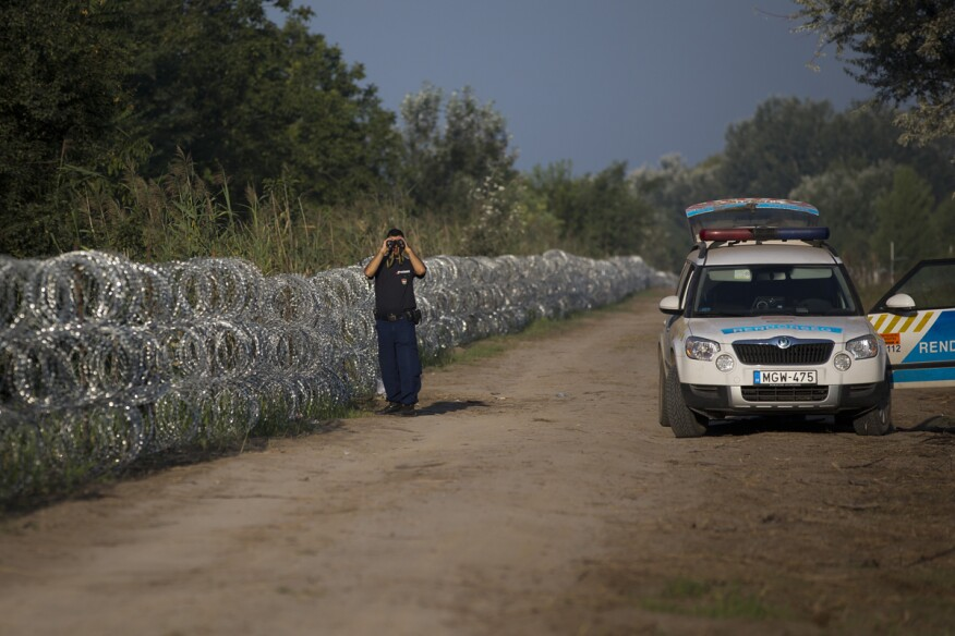 A Hungarian policeman observes terrain at the border with Serbia, looking for refugees crossing the barbed wire fence. Migrants fearful of death at sea in overcrowded and flimsy boats have increasingly turned to using a land route to Europe through the Western Balkans.