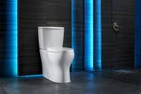 Vacuum-Assisted Low-Flow Toilet