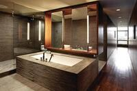 Blur Loft Bath, Milwaukee, by Johnsen Schmaling Architects