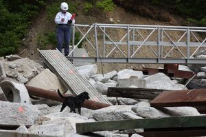 Aggregate Industries US Hosts International Rescue Dog Organization Trial