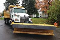 Road-hugging snow plow blade